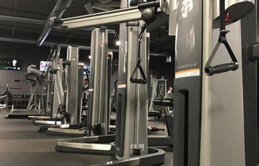 Freemotion Equipment For Heath Clubs Cornerstone Clubs 2