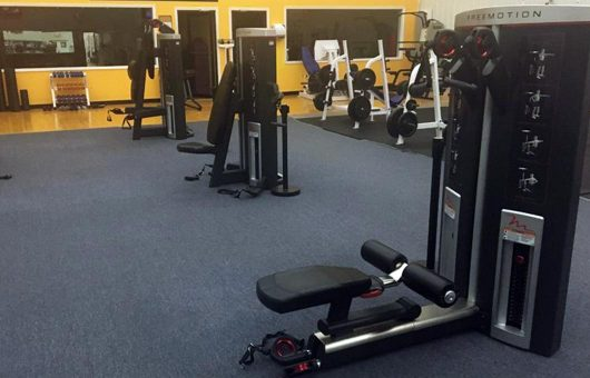 Freemotion Fitness Equipment For Golf And Country Clubs Westfit Tennis Club 2